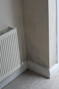 Mould in a pyramid shape in the corner of a room is a common result of condensation