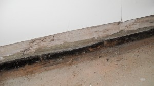 Failure to connect the floor membrane to the dpc led to high moisture levels & ultimately wet rot