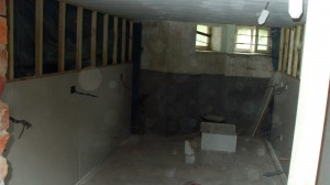 Cellar Before Conversion